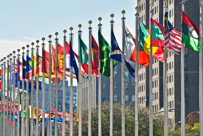 国連って現場では何人くらい何カ国の人が働いてるの?