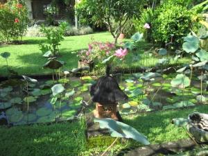 Bali 2010 637