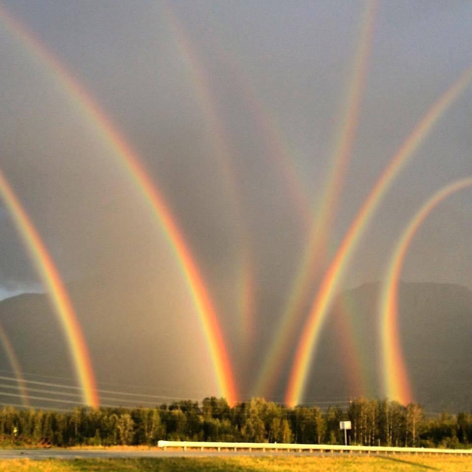 虹は再生のシンボル
