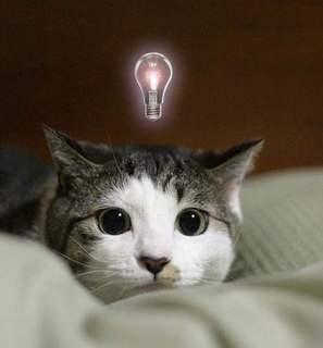 アイデアはどこからやって来るの? 本読んでないのに原稿書けるの?ー原稿を書き始めて学んだ直観力トレーニング